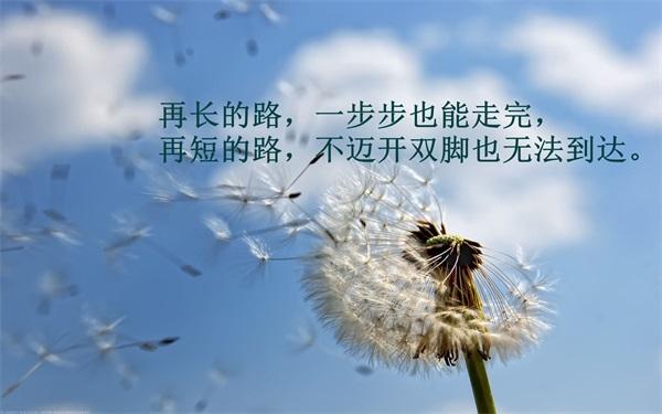 2017年高考北京市高校招生计划
