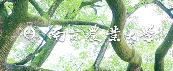 2018年南京农业大学迎新网入口