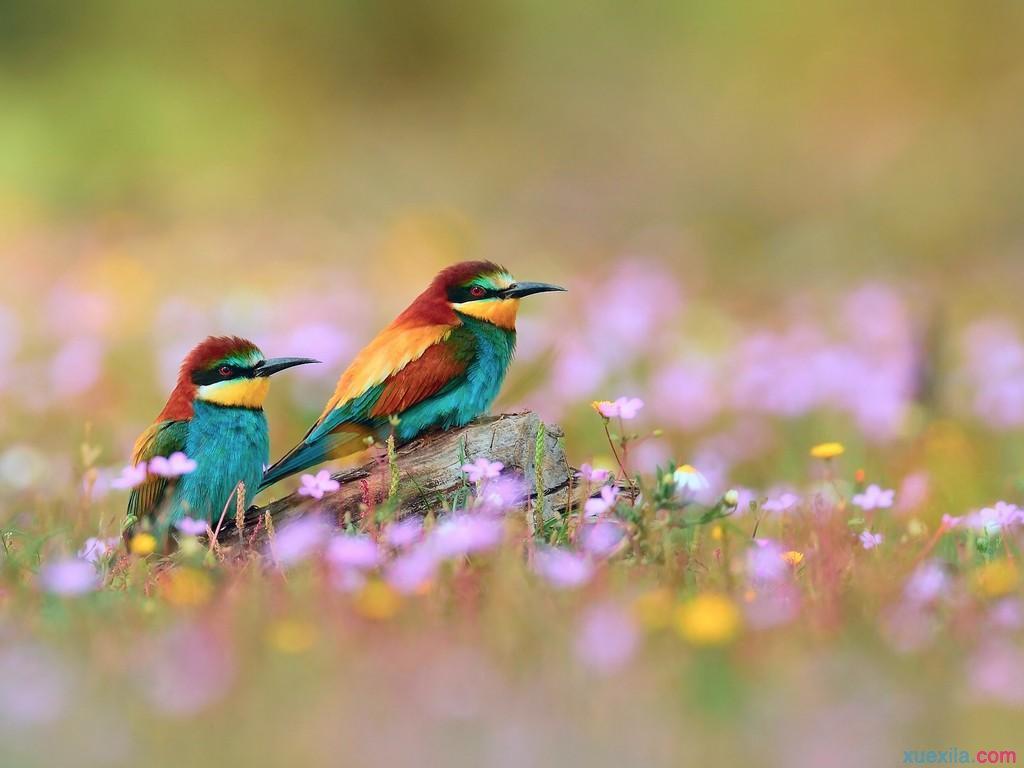 早上起床的心情说说 早上起床的情话说说图片
