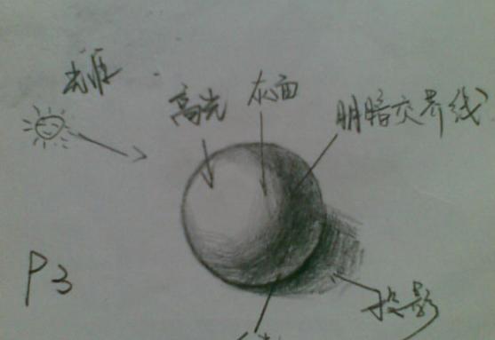 素描初学者绘画步骤教程