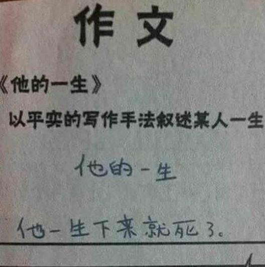 雷人小学生奇葩作文