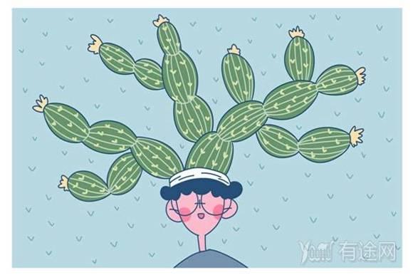 养多肉植物的注意事项 怎样养才能更旺盛