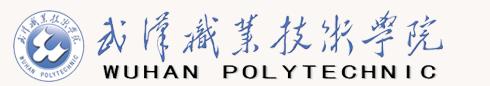 2019武汉设计工程学院迎新网入口