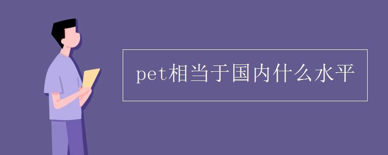 pet相当于国内什么水平