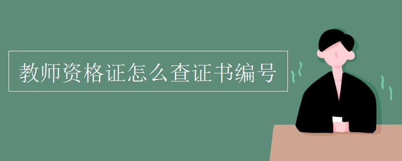 教师资格证证书生成器图片