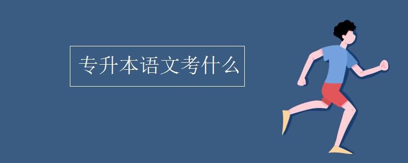 專升本語文考什么