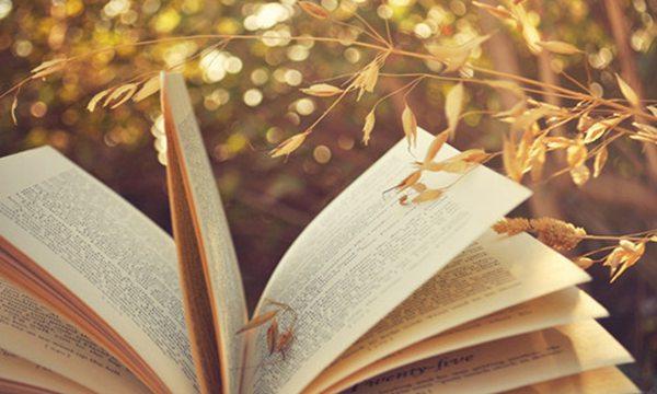 小学生有没有必要读经典 孩子只读杂书不爱读经典怎么办